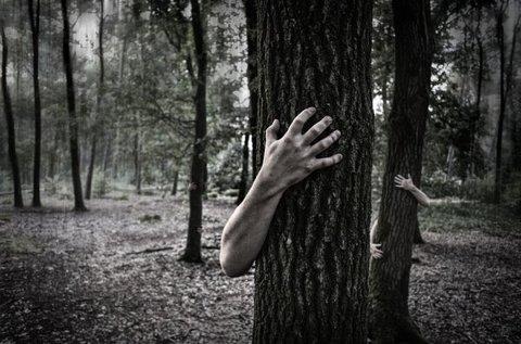 Zombis túlélőjáték 1 fő részére a Bükk-hegységben