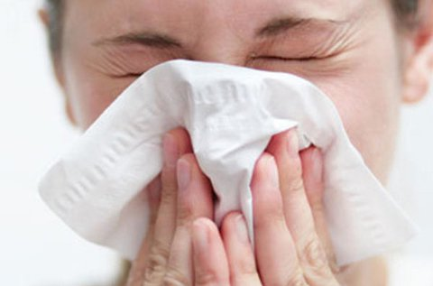 Átfogó allergiavizsgálat 180 féle allergénre