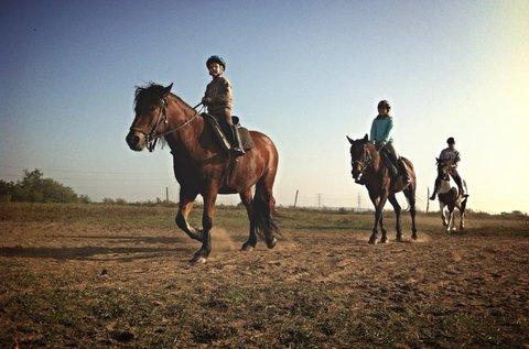 Futószáras lovaglás kezdőknek és haladóknak