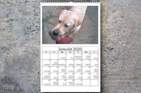 Éves naptár saját fotókkal, A3-as méretben