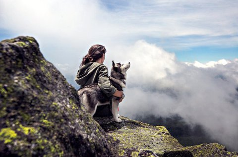1 napos kutyás túra a Bükk-hegységben