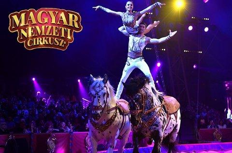 Belépő a Magyar Nemzeti Cirkusz showműsorára