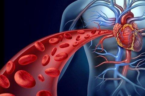 Komplex szív- és agyi-érrendszeri kivizsgálás