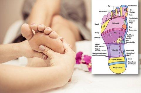 Talpreflexológiai kezelés és állapotfelmérés