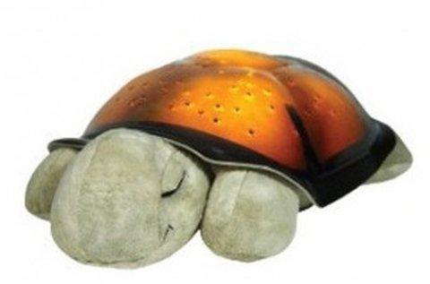 Világító barna teknős