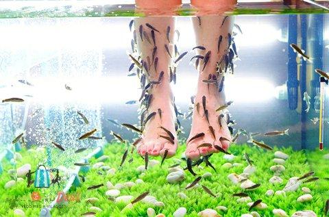 1 alkalom halpedikűr a puha, egészséges lábakért