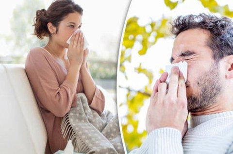Allergiavizsgálat 200 allergénre