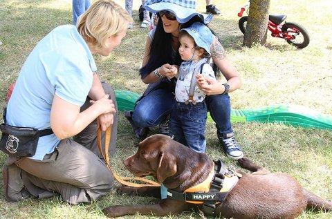 Élménykutyázás képzett terápiás állatokkal