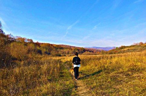 Választható túracsomagok a Bükk-hegységben