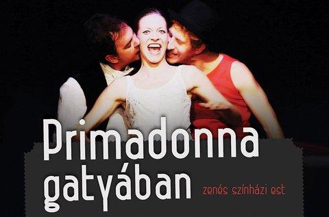 Jegy a Primadonna gatyában című előadásra
