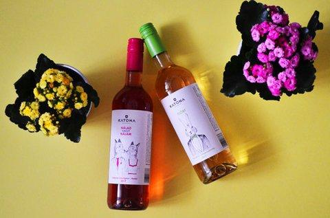 Tavaszi borkóstoló és mini borkurzus 1 fő részére