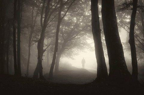 Menekülés a pokoli erdőből szabadulós játék