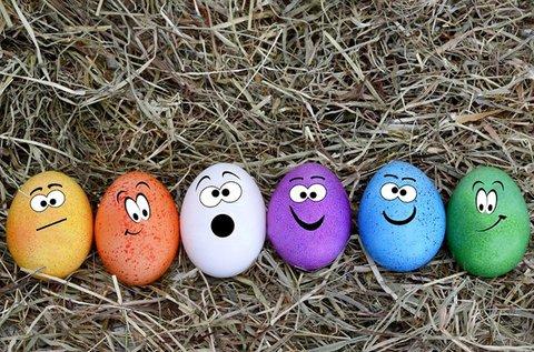Húsvéti tojásfestés és lidérctojás készítés 1 főnek